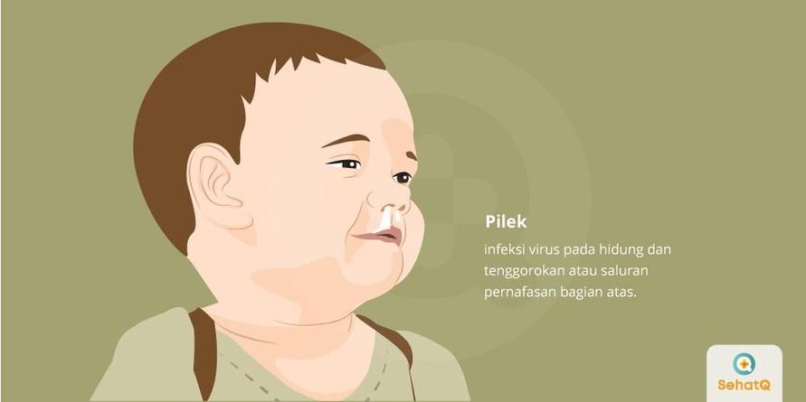 Pilek disebarkan saat seseorang yang terjangkit batuk, bersin atau berbicara.