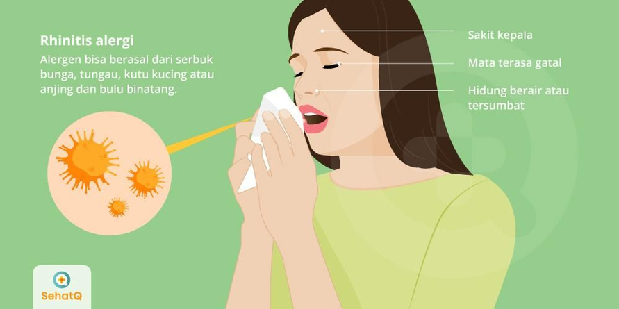 Rhinitis alergi dapat diatasi dengan pemberian antihistamin atau larutan garam dalam bentuk semprotan hidung.