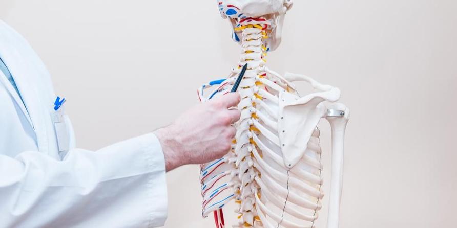 Rhizotomy dilakukan pada tulang belakang.