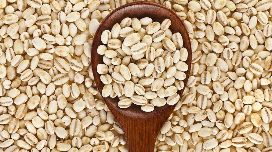 Barley atau jelai adalah gandum dengan tekstur kenyal dan rasa seperti kacang