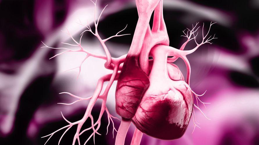 Penyebab jantung bocor pada orang dewasa umumnya terkait dengan kebocoran katup jantung