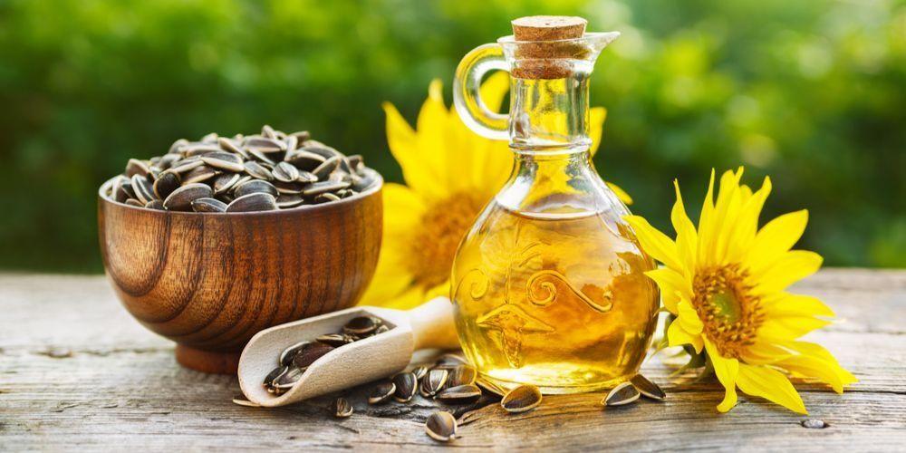 Minyak bunga matahari memiliki segudang manfaat yang baik bagi tubuh