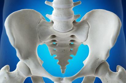 Perbedaan tulang panggul pria dan wanita dapat dilihat dari bentuk dan fungsinya