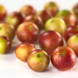 Camu-camu berry dianggap sebagai superfood karena kandungan nutrisinya yang melimpah.