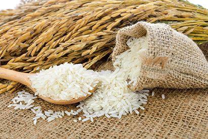 Mengenal Ferulic Acid, Kandungan Serum Wajah untuk Mencegah Keriput