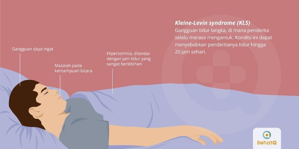 image Sindrom Putri Tidur atau Kleine-Levin Syndrome