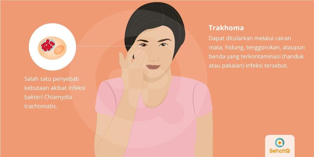 image Trakhoma